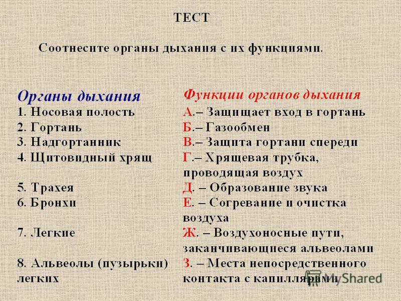 ответы 1 - А 1 - А 2 - Б 2 - Б 3 - А 3 - А 4 - Б 4 - Б 5 - Б 5 - Б 6 - В 6 - В