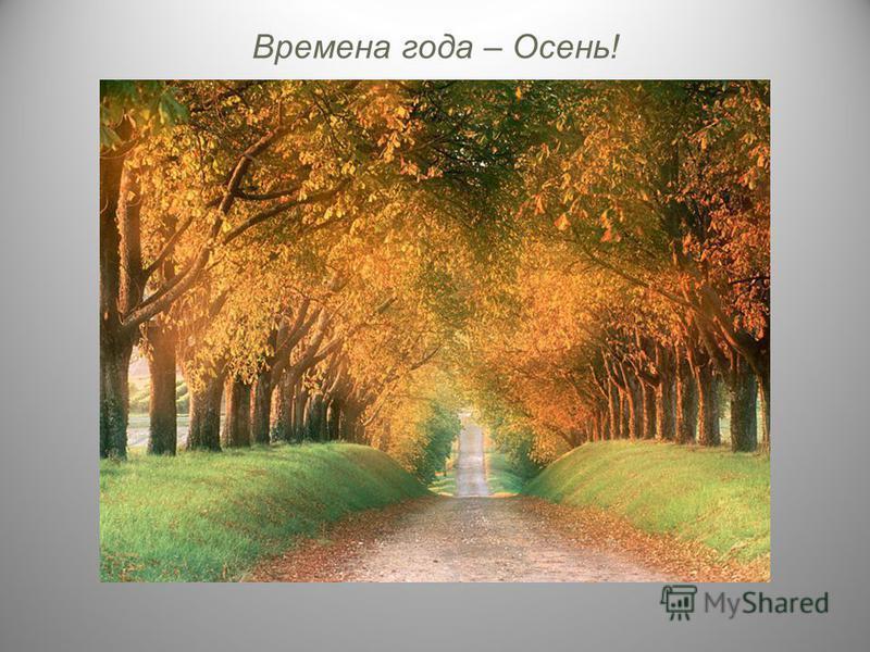 Времена года – Осень!