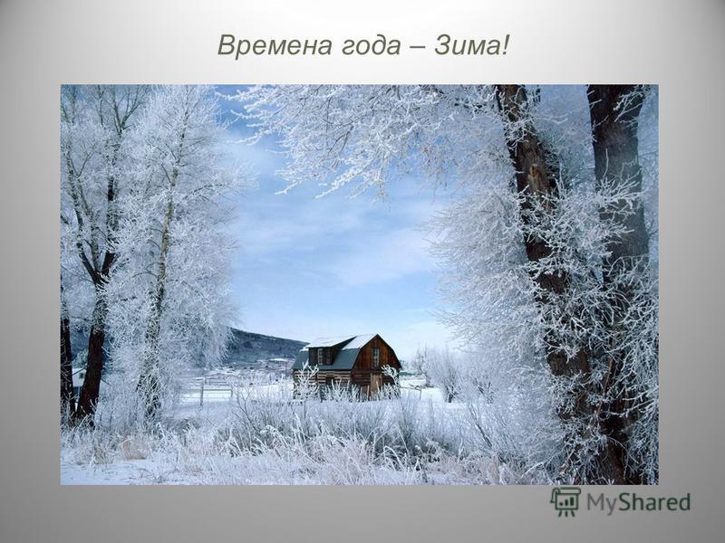 Времена года – Зима!