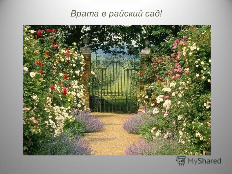 Врата в райский сад!