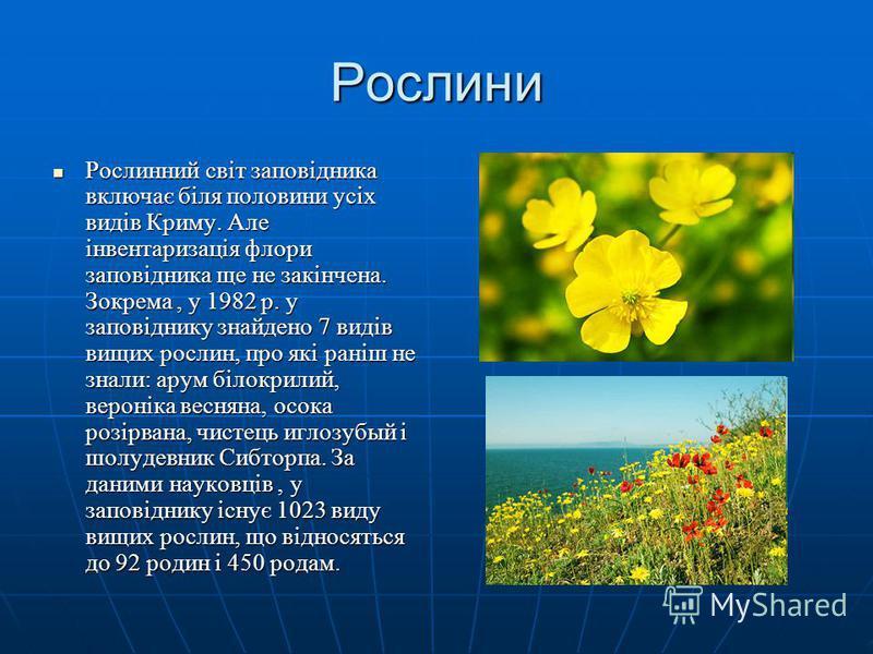 Рослини Рослинний світ заповідника включає біля половини усіх видів Криму. Але інвентаризація флори заповідника ще не закінчена. Зокрема, у 1982 р. у заповіднику знайдено 7 видів вищих рослин, про які раніш не знали: арум білокрилий, вероніка весняна