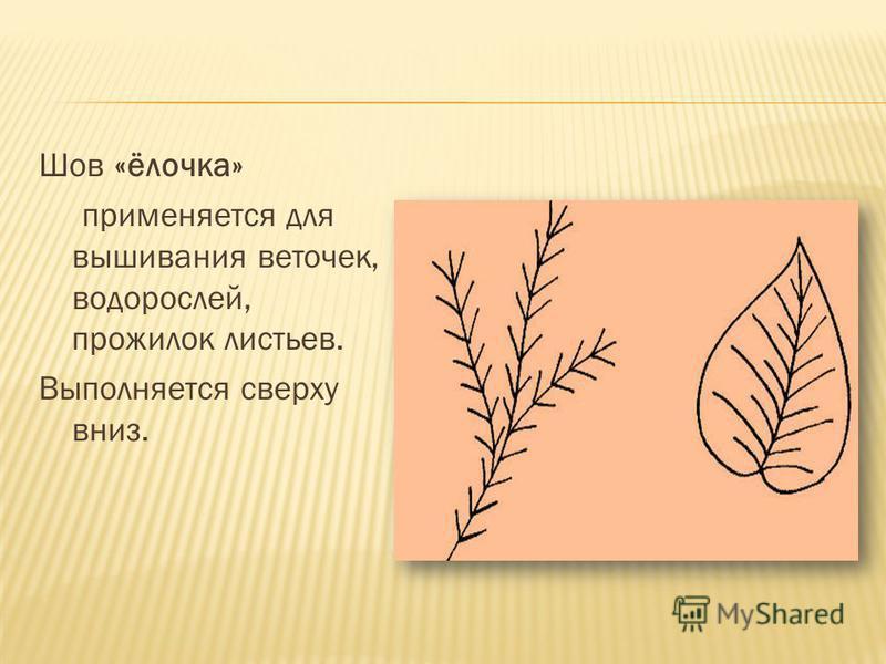 Шов «ёлочка» применяется для вышивания веточек, водорослей, прожилок листьев. Выполняется сверху вниз.