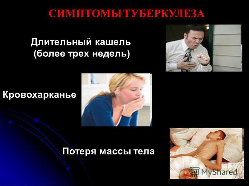 СИМПТОМЫ ТУБЕРКУЛЕЗА Длительный кашель (более трех недель) Кровохарканье Потеря массы тела