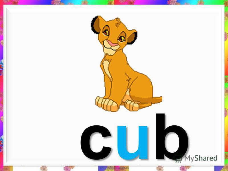 cube cube cube cube