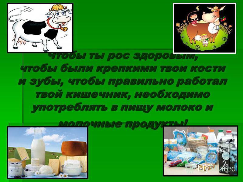 Чтобы ты рос здоровым, чтобы были крепкими твои кости и зубы, чтобы правильно работал твой кишечник, необходимо употреблять в пищу молоко и молочные продукты!