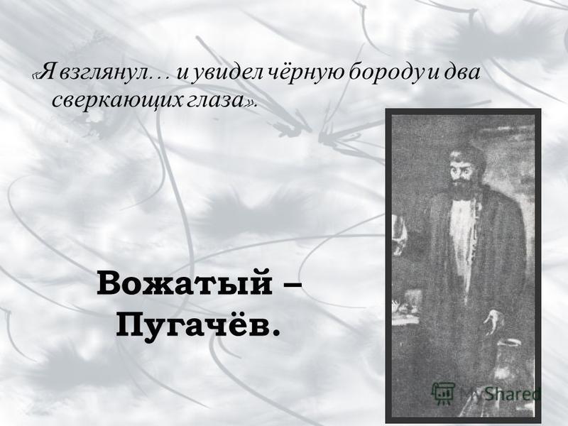 Вожатый – Пугачёв. « Я взглянул … и увидел чёрную бороду и два сверкающих глаза ».