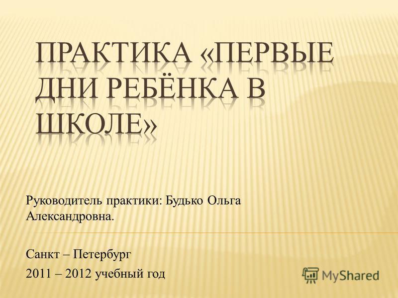 Руководитель практики: Будько Ольга Александровна. Санкт – Петербург 2011 – 2012 учебный год