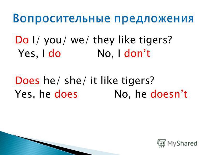 Do I/ you/ we/ they like tigers? Yes, I do No, I dont Does he/ she/ it like tigers? Yes, he does No, he doesnt