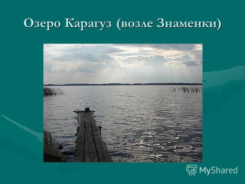 Озеро Карагуз (возле Знаменки)