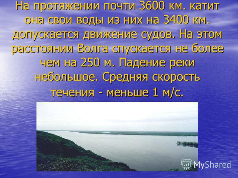 На протяжении почти 3600 км. катит она свои воды из них на 3400 км. допускается движение судов. На этом расстоянии Волга спускается не более чем на 250 м. Падение реки небольшое. Средняя скорость течения - меньше 1 м/с.