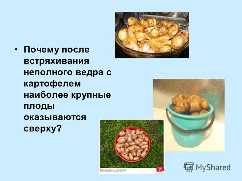 Почему после встряхивания неполного ведра с картофелем наиболее крупные плоды оказываются сверху?