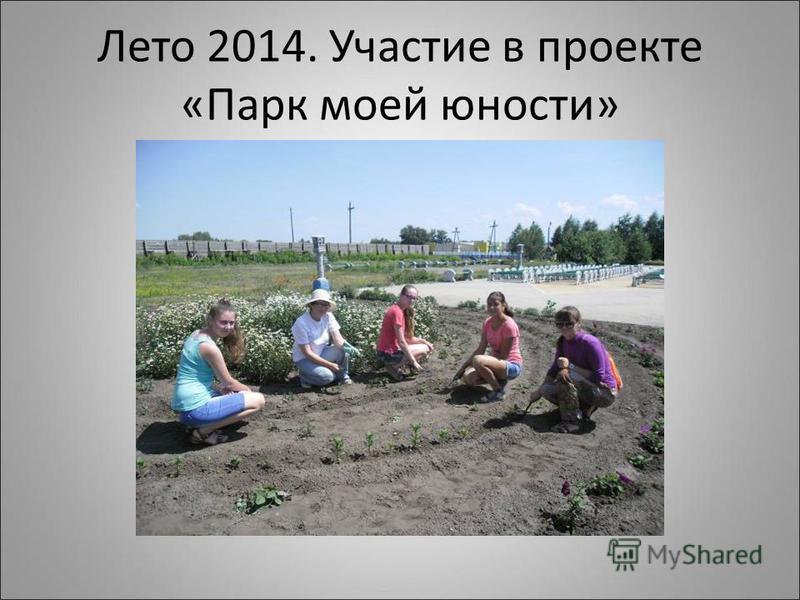Лето 2014. Участие в проекте «Парк моей юности»