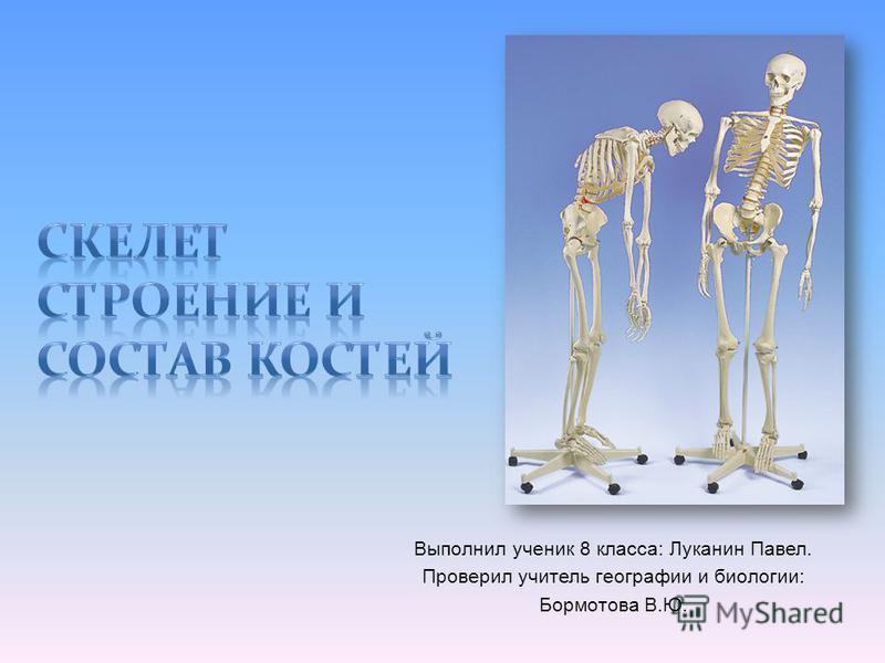 Выполнил ученик 8 класса: Луканин Павел. Проверил учитель географии и биологии: Бормотова В.Ю.