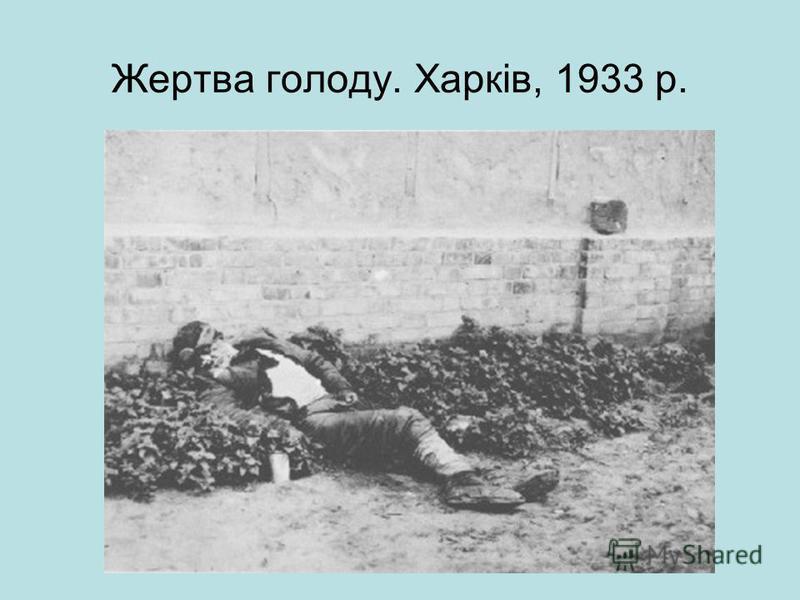 Жертва голоду. Харків, 1933 р.