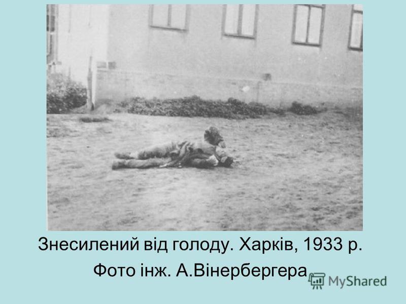 Знесилений від голоду. Харків, 1933 р. Фото інж. А.Вінербергера