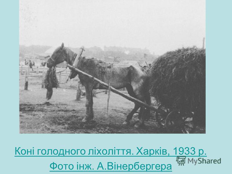 Коні голодного ліхоліття. Харків, 1933 р. Фото інж. А.Вінербергера