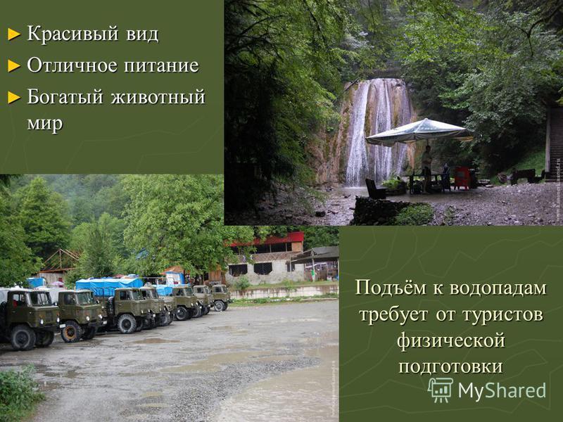 Подъём к водопадам требует от туристов физической подготовки Красивый вид Красивый вид Отличное питание Отличное питание Богатый животный мир Богатый животный мир