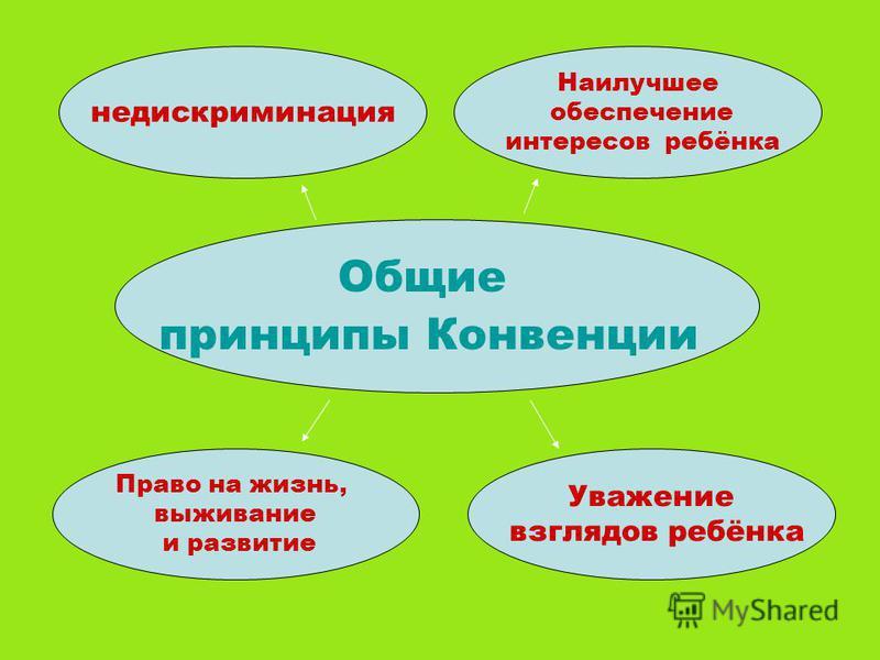 Общие принципы Конвенции недискриминация Наилучшее обеспечение интересов ребёнка Право на жизнь, выживание и развитие Уважение взглядов ребёнка