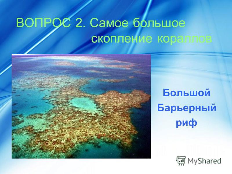 ВОПРОС 2. Самое большое скопление кораллов Большой Барьерный риф
