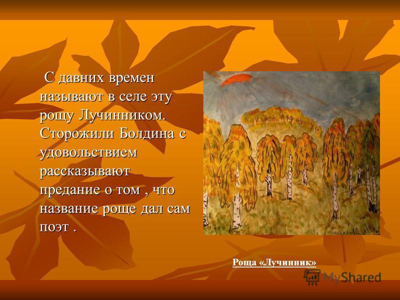 С давних времен называют в селе эту рощу Лучинником. Сторожили Болдина с удовольствием рассказывают предание о том, что название роще дал сам поэт. С давних времен называют в селе эту рощу Лучинником. Сторожили Болдина с удовольствием рассказывают пр