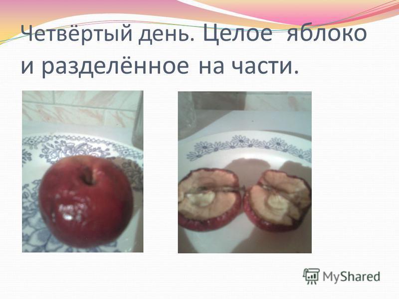 Четвёртый день. Целое яблоко и разделённое на части.