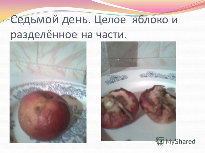 Седьмой день. Целое яблоко и разделённое на части.