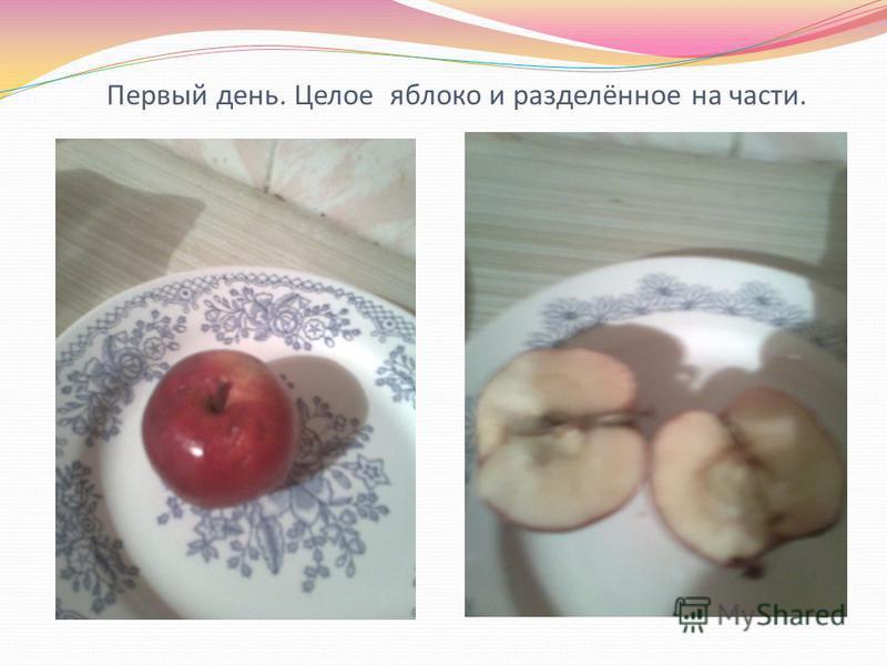 Первый день. Целое яблоко и разделённое на части.