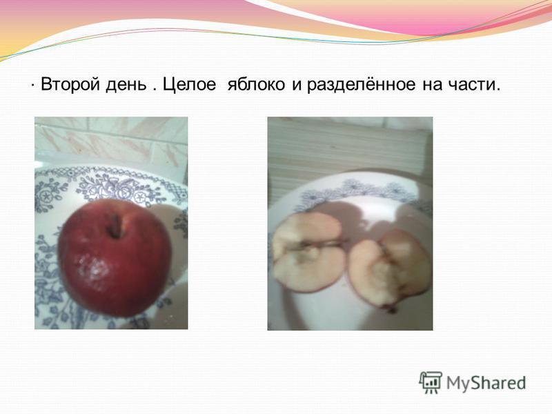 Второй день. Целое яблоко и разделённое на части..