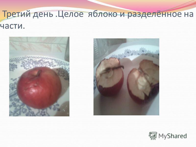 Третий день.Целое яблоко и разделённое на части.