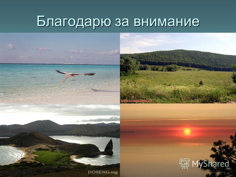 Благодарю за внимание Приятного отдыха на природе