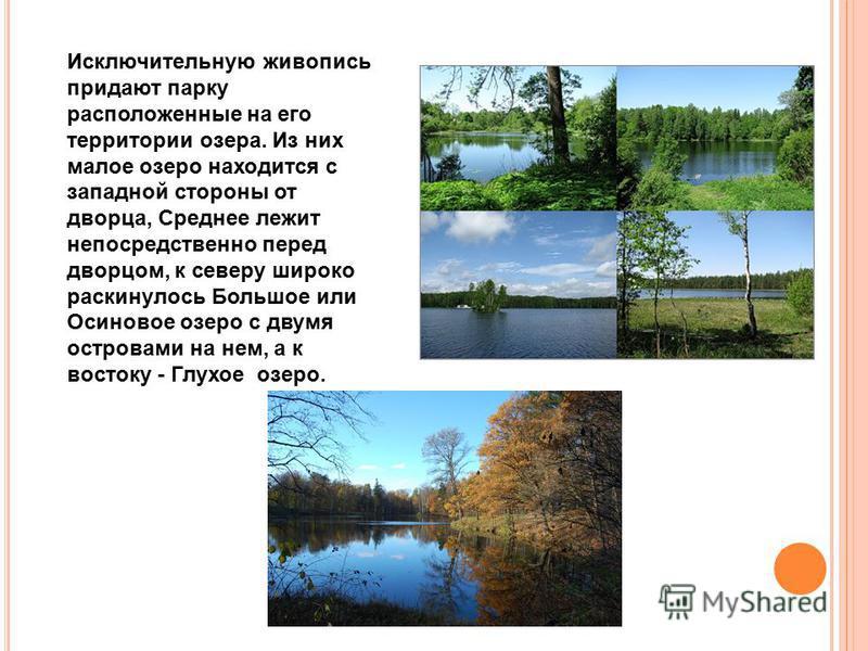Исключительную живопись придают парку расположенные на его территории озера. Из них малое озеро находится с западной стороны от дворца, Среднее лежит непосредственно перед дворцом, к северу широко раскинулось Большое или Осиновое озеро с двумя остров