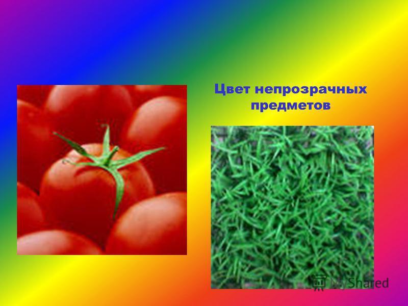 Цвет непрозрачных предметов