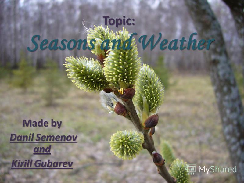 Topic: Seasons and Weather Made by Danil Semenov and Kirill Gubarev