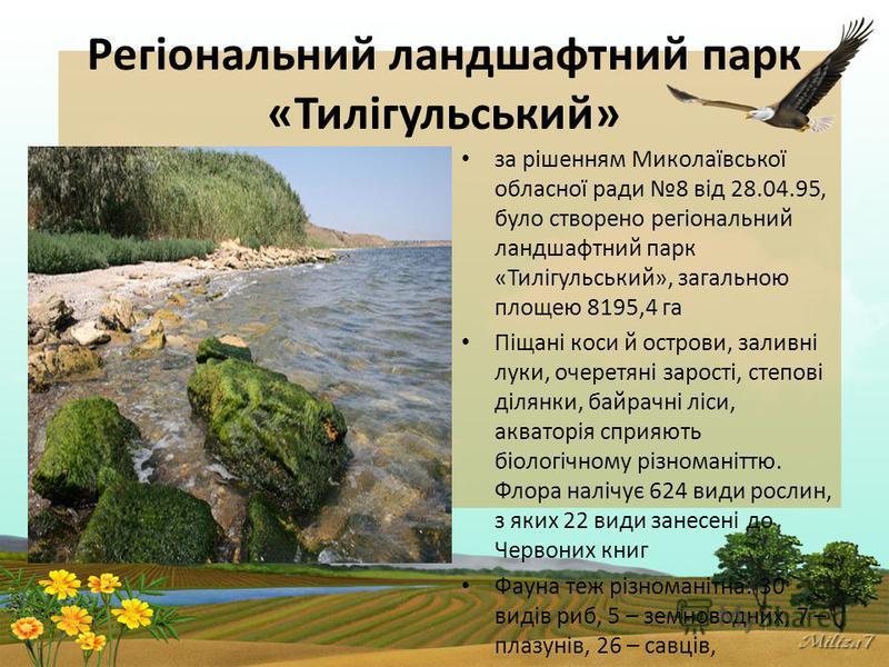 Регіональний ландшафтний парк «Тилігульський» за рішенням Миколаївської обласної ради 8 від 28.04.95, було створено регіональний ландшафтний парк «Тилігульський», загальною площею 8195,4 га Піщані коси й острови, заливні луки, очеретяні зарості, степ