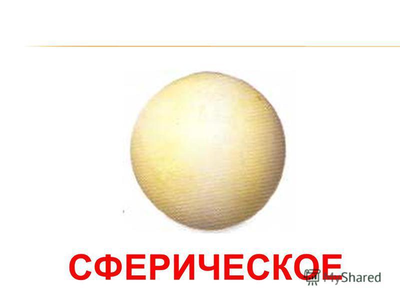 ОВАЛЬНОЕ