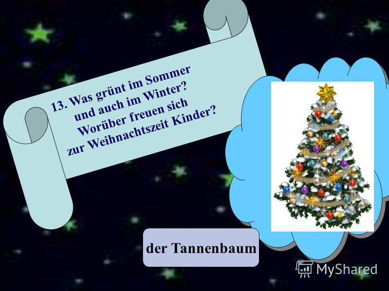 der Tannenbaum 13. Was grünt im Sommer und auch im Winter? Worüber freuen sich zur Weihnachtszeit Kinder?