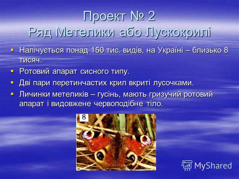 Проект 2 Ряд Метелики або Лускокрилі Налічується понад 150 тис. видів, на Україні – близько 8 тисяч. Налічується понад 150 тис. видів, на Україні – близько 8 тисяч. Ротовий апарат сисного типу. Ротовий апарат сисного типу. Дві пари перетинчастих крил