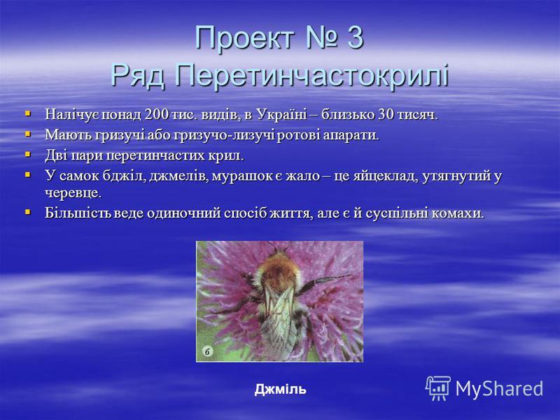 Проект 3 Ряд Перетинчастокрилі Налічує понад 200 тис. видів, в Україні – близько 30 тисяч. Налічує понад 200 тис. видів, в Україні – близько 30 тисяч. Мають гризучі або гризучо-лизучі ротові апарати. Мають гризучі або гризучо-лизучі ротові апарати. Д