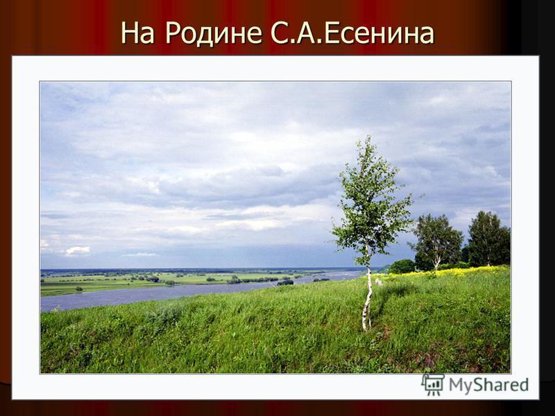 На Родине С.А.Есенина