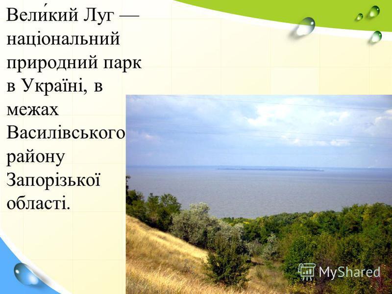 Вели́кий Луг національний природний парк в Україні, в межах Василівського району Запорізької області.