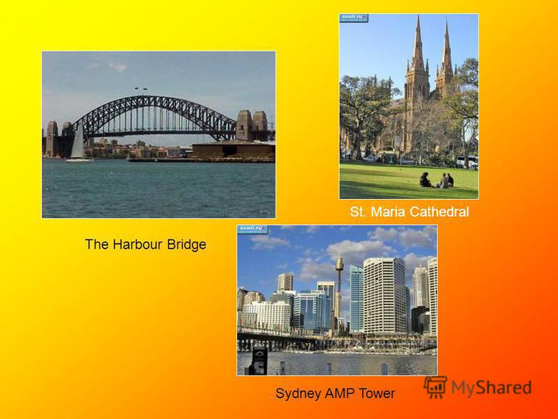 St. Maria Cathedral The Harbour Bridge Sydney AMP Tower