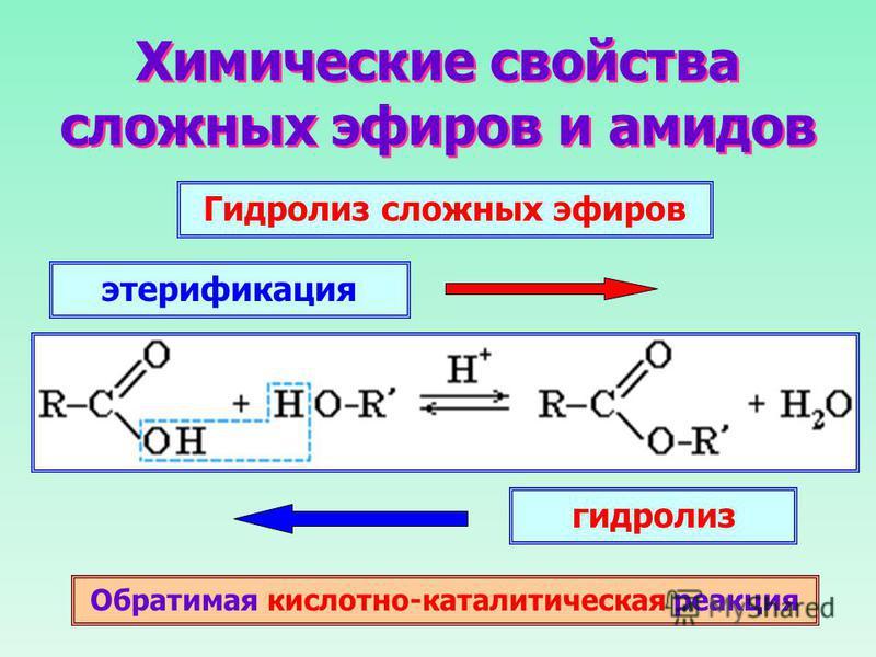 создании сложные эфиры химические реакции этом разделе найдете