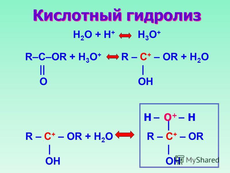 Кислотный гидролиз R–C–OR + H 3 O + R – C + – OR + H 2 O || | O OH H 2 O + H + H 3 O + R – C + – OR + H 2 O R – C + – OR | | OH OH | O+O+ –– HH