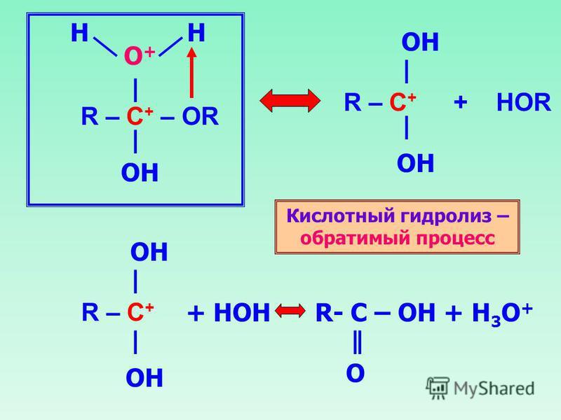 R – C + – OR | | O+O+ OH HH R – C + + HOR | | OH R – C + | | OH + HOH R- C – OH + H 3 O + || O Кислотный гидролиз – обратимый процесс