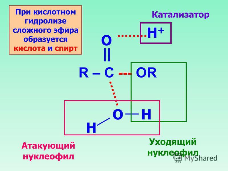 R – C --- OR O || O H+H+ H H Катализатор Уходящий нуклеофил Атакующий нуклеофил При кислотном гидролизе сложного эфира образуется кислота и спирт
