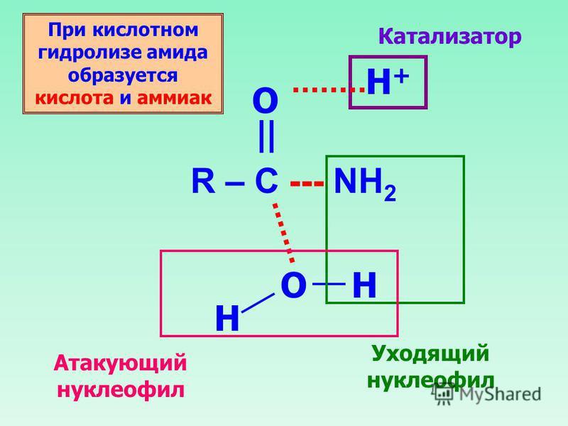 R – C --- NH 2 O || O H+H+ H H Катализатор Уходящий нуклеофил Атакующий нуклеофил При кислотном гидролизе амида образуется кислота и аммиак