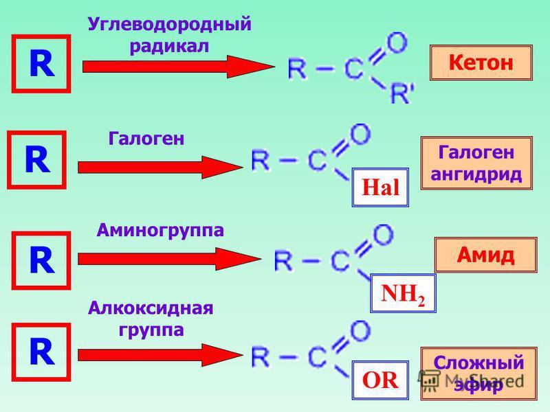 R R R R Кетон Углеводородный радикал Галоген Hal Галоген ангидрид Амид Сложный эфир Аминогруппа NH 2 OR Алкоксидная группа