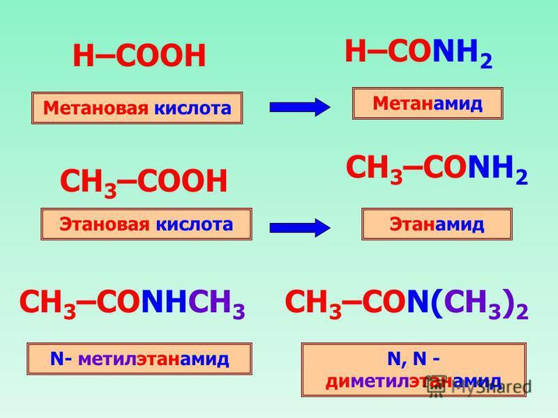 H–COOH H–CONH 2 CH 3 –COOH CH 3 –CONH 2 Метановая кислота Метанамид Этановая кислота Этанамид CH 3 –CONHCH 3 N- метилэтанамид CH 3 –CON(CH 3 ) 2 N, N - диметилэтанамид