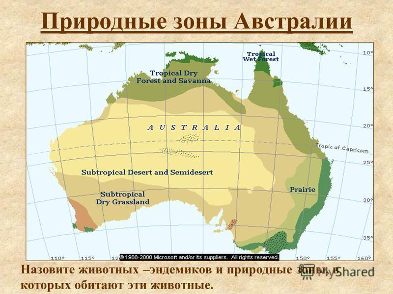 Природные зоны Австралии Назовите животных –эндемиков и природные зоны, в которых обитают эти животные.