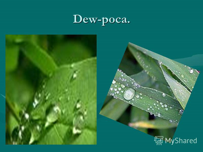 Dew-роса.